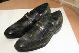 STEP1. 靴全体にカビ